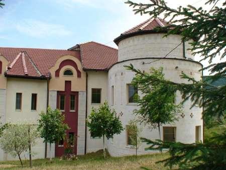 Manastirea Sfantul Ioan Botezatorul Alba 13