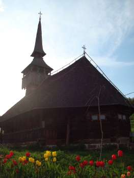 Manastirea Sfantul Ioan Botezatorul Alba 19