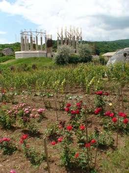 Manastirea Sfantul Ioan Botezatorul Alba 23